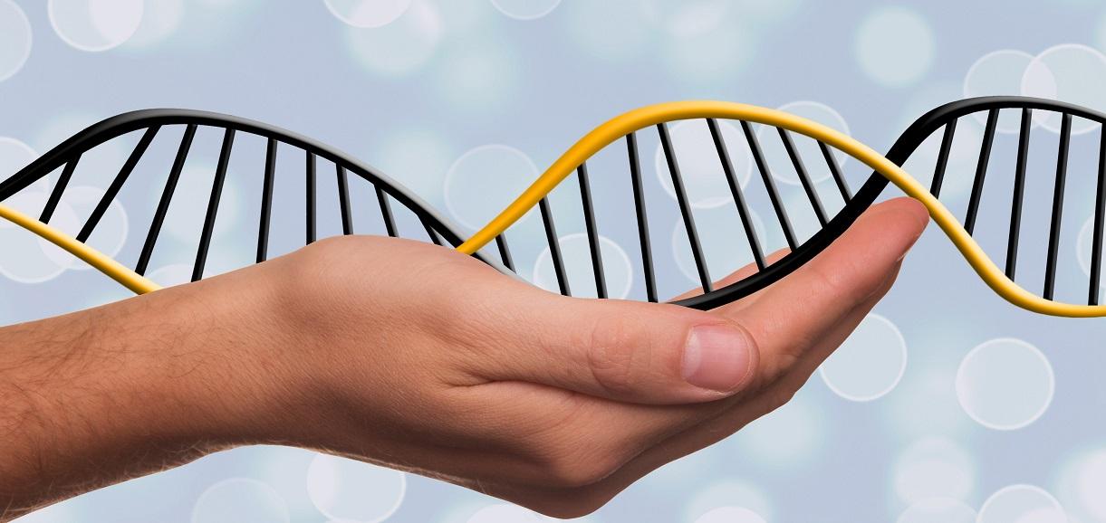 Genetica: come accedere ai servizi