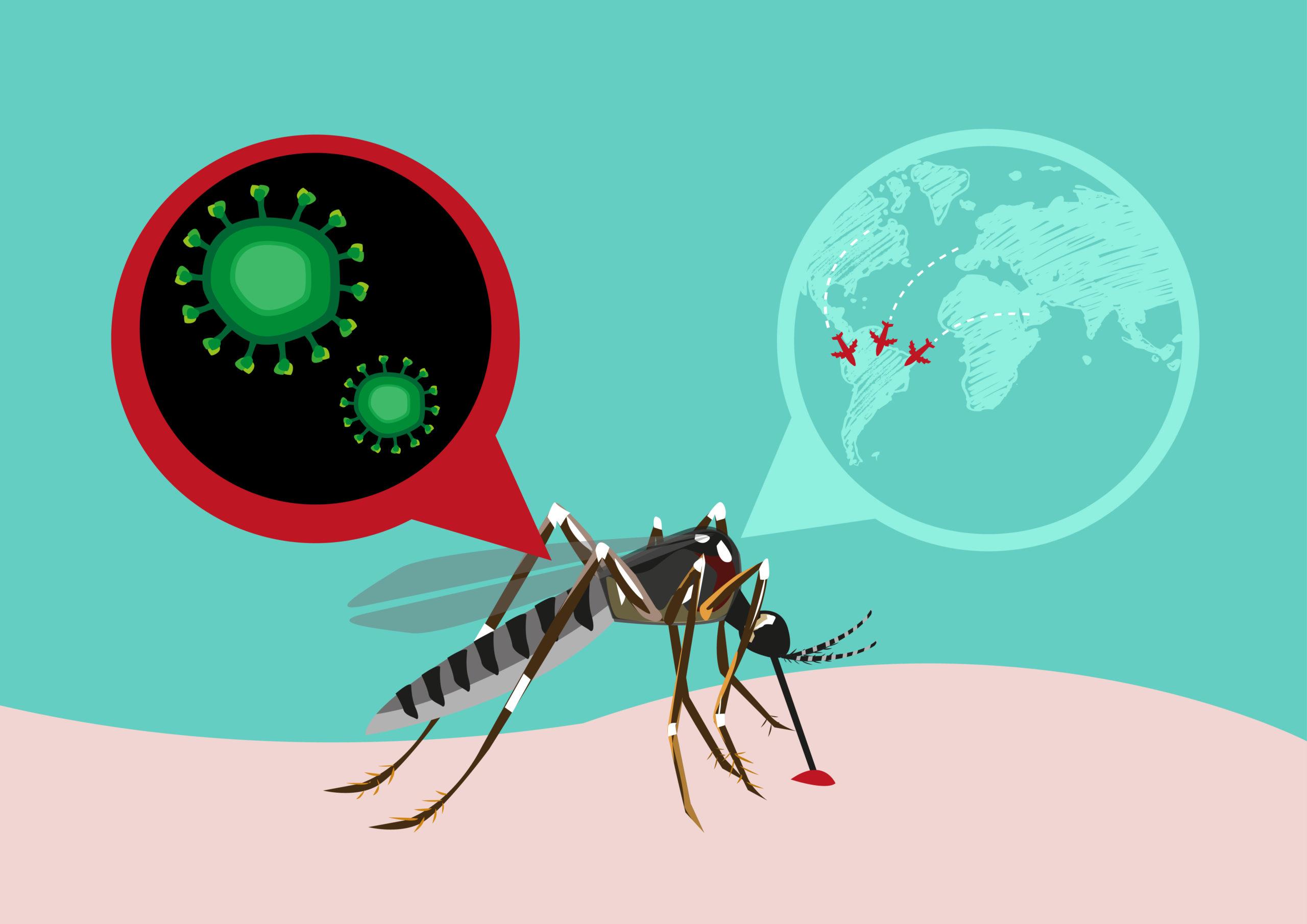 Infezione da virus della zanzara Zika